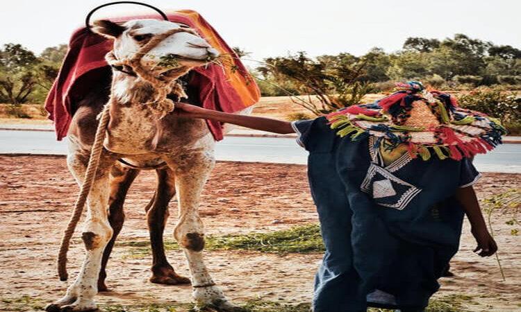 Voyager au Maroc : les conseils que vous devez suivre !